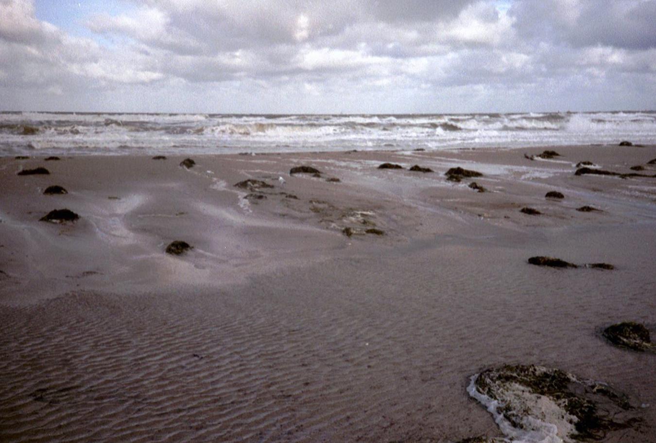 Lomografie – Sandbank in Warnemünde